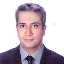 Ahmet Levent Aydın