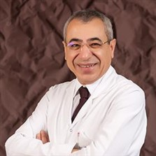 Mehmet Ufuk Şenköylü