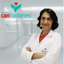 Nazan B. Pekcan
